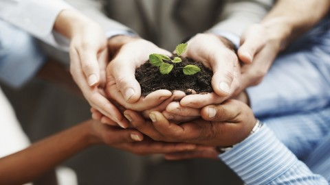 Creating a Corporate Culture That Encourages Innovation