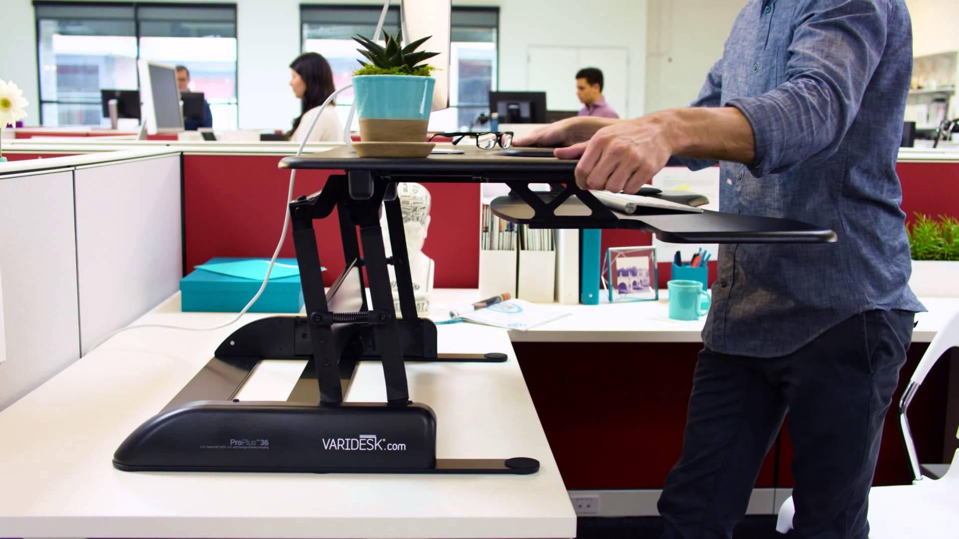 Standing Desks For Start Ups Empresa Journal